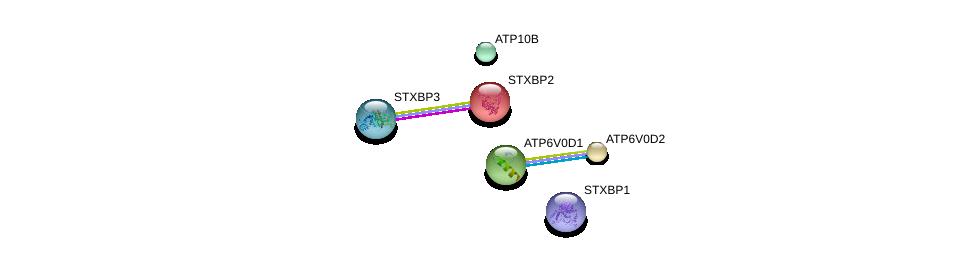 http://string-db.org/version_10/api/image/networkList?limit=0&targetmode=proteins&caller_identity=gene_cards&network_flavor=evidence&identifiers=9606.ENSP00000313600%0d%0a9606.ENSP00000290949%0d%0a9606.ENSP00000285393%0d%0a9606.ENSP00000362399%0d%0a9606.ENSP00000359025%0d%0a9606.ENSP00000221283%0d%0a