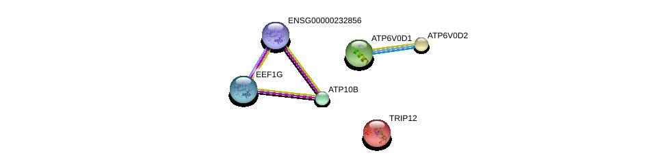 http://string-db.org/version_10/api/image/networkList?limit=0&targetmode=proteins&caller_identity=gene_cards&network_flavor=evidence&identifiers=9606.ENSP00000313600%0d%0a9606.ENSP00000403936%0d%0a9606.ENSP00000331901%0d%0a9606.ENSP00000283943%0d%0a9606.ENSP00000285393%0d%0a9606.ENSP00000290949%0d%0a