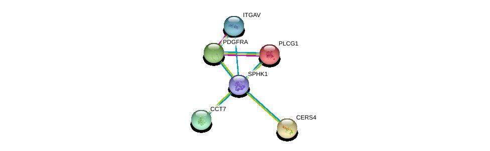 http://string-db.org/version_10/api/image/networkList?limit=0&targetmode=proteins&caller_identity=gene_cards&network_flavor=evidence&identifiers=9606.ENSP00000313681%0d%0a9606.ENSP00000244007%0d%0a9606.ENSP00000251363%0d%0a9606.ENSP00000257290%0d%0a9606.ENSP00000258091%0d%0a9606.ENSP00000261023%0d%0a