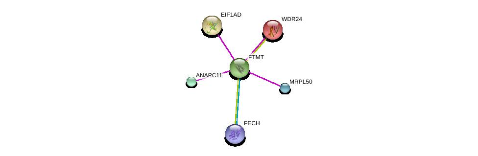 http://string-db.org/version_10/api/image/networkList?limit=0&targetmode=proteins&caller_identity=gene_cards&network_flavor=evidence&identifiers=9606.ENSP00000313691%0d%0a9606.ENSP00000372326%0d%0a9606.ENSP00000293883%0d%0a9606.ENSP00000309175%0d%0a9606.ENSP00000363999%0d%0a9606.ENSP00000349957%0d%0a