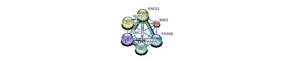 http://string-db.org/version_10/api/image/networkList?limit=0&targetmode=proteins&caller_identity=gene_cards&network_flavor=evidence&identifiers=9606.ENSP00000313851%0d%0a9606.ENSP00000298767%0d%0a9606.ENSP00000354720%0d%0a9606.ENSP00000297338%0d%0a9606.ENSP00000243578%0d%0a9606.ENSP00000251074%0d%0a