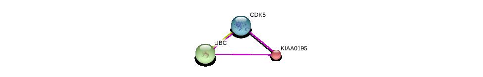 http://string-db.org/version_10/api/image/networkList?limit=0&targetmode=proteins&caller_identity=gene_cards&network_flavor=evidence&identifiers=9606.ENSP00000313885%0d%0a9606.ENSP00000419782%0d%0a9606.ENSP00000344818%0d%0a