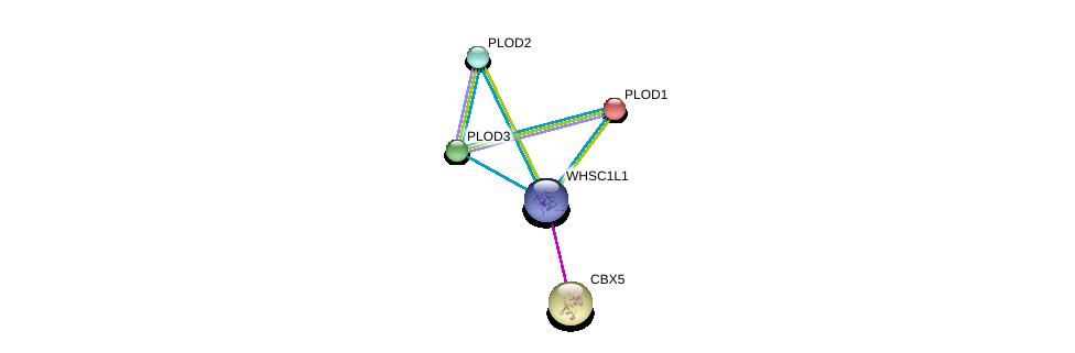 http://string-db.org/version_10/api/image/networkList?limit=0&targetmode=proteins&caller_identity=gene_cards&network_flavor=evidence&identifiers=9606.ENSP00000313983%0d%0a9606.ENSP00000223127%0d%0a9606.ENSP00000196061%0d%0a9606.ENSP00000282903%0d%0a9606.ENSP00000209875%0d%0a9606.ENSP00000209875%0d%0a