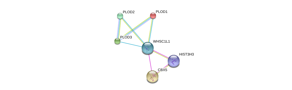 http://string-db.org/version_10/api/image/networkList?limit=0&targetmode=proteins&caller_identity=gene_cards&network_flavor=evidence&identifiers=9606.ENSP00000313983%0d%0a9606.ENSP00000282903%0d%0a9606.ENSP00000196061%0d%0a9606.ENSP00000223127%0d%0a9606.ENSP00000209875%0d%0a9606.ENSP00000355657%0d%0a