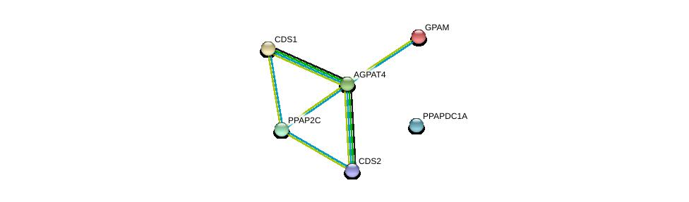 http://string-db.org/version_10/api/image/networkList?limit=0&targetmode=proteins&caller_identity=gene_cards&network_flavor=evidence&identifiers=9606.ENSP00000314036%0d%0a9606.ENSP00000419879%0d%0a9606.ENSP00000295887%0d%0a9606.ENSP00000265276%0d%0a9606.ENSP00000329697%0d%0a9606.ENSP00000381302%0d%0a