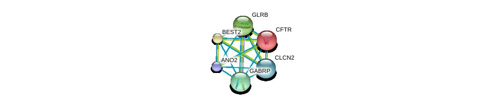 http://string-db.org/version_10/api/image/networkList?limit=0&targetmode=proteins&caller_identity=gene_cards&network_flavor=evidence&identifiers=9606.ENSP00000314048%0d%0a9606.ENSP00000003084%0d%0a9606.ENSP00000042931%0d%0a9606.ENSP00000264428%0d%0a9606.ENSP00000265294%0d%0a9606.ENSP00000265593%0d%0a