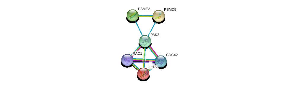 http://string-db.org/version_10/api/image/networkList?limit=0&targetmode=proteins&caller_identity=gene_cards&network_flavor=evidence&identifiers=9606.ENSP00000314067%0d%0a9606.ENSP00000314458%0d%0a9606.ENSP00000348461%0d%0a9606.ENSP00000046794%0d%0a9606.ENSP00000210313%0d%0a9606.ENSP00000216802%0d%0a