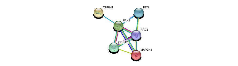 http://string-db.org/version_10/api/image/networkList?limit=0&targetmode=proteins&caller_identity=gene_cards&network_flavor=evidence&identifiers=9606.ENSP00000314067%0d%0a9606.ENSP00000314458%0d%0a9606.ENSP00000348461%0d%0a9606.ENSP00000306490%0d%0a9606.ENSP00000331504%0d%0a9606.ENSP00000262445%0d%0a