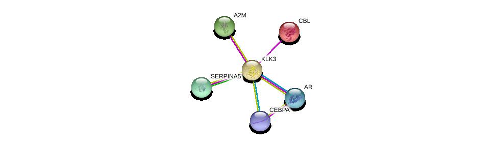 http://string-db.org/version_10/api/image/networkList?limit=0&targetmode=proteins&caller_identity=gene_cards&network_flavor=evidence&identifiers=9606.ENSP00000314151%0d%0a9606.ENSP00000363822%0d%0a9606.ENSP00000264033%0d%0a9606.ENSP00000323929%0d%0a9606.ENSP00000333203%0d%0a9606.ENSP00000427514%0d%0a