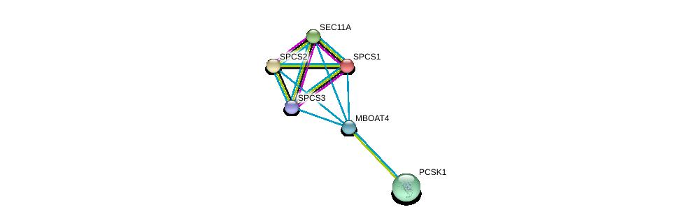 http://string-db.org/version_10/api/image/networkList?limit=0&targetmode=proteins&caller_identity=gene_cards&network_flavor=evidence&identifiers=9606.ENSP00000314196%0d%0a9606.ENSP00000233025%0d%0a9606.ENSP00000263672%0d%0a9606.ENSP00000268220%0d%0a9606.ENSP00000308024%0d%0a9606.ENSP00000427463%0d%0a