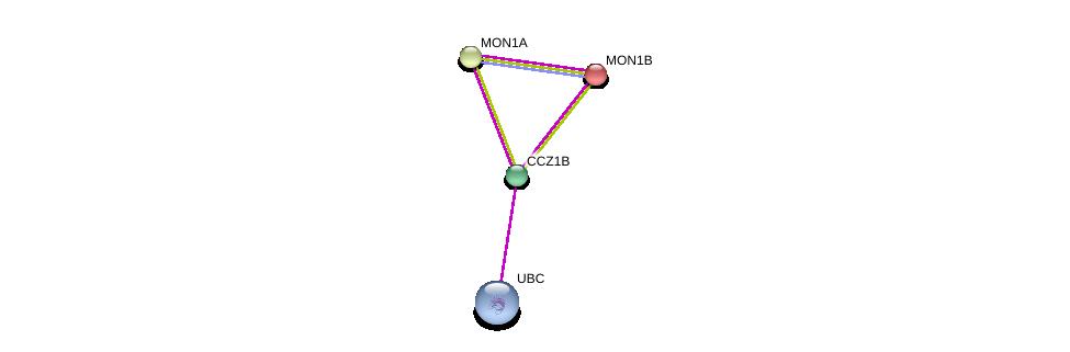 http://string-db.org/version_10/api/image/networkList?limit=0&targetmode=proteins&caller_identity=gene_cards&network_flavor=evidence&identifiers=9606.ENSP00000314544%0d%0a9606.ENSP00000344818%0d%0a9606.ENSP00000296473%0d%0a9606.ENSP00000248248%0d%0a