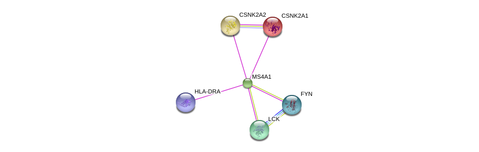 http://string-db.org/version_10/api/image/networkList?limit=0&targetmode=proteins&caller_identity=gene_cards&network_flavor=evidence&identifiers=9606.ENSP00000314620%0d%0a9606.ENSP00000378786%0d%0a9606.ENSP00000217244%0d%0a9606.ENSP00000262506%0d%0a9606.ENSP00000337825%0d%0a9606.ENSP00000346671%0d%0a