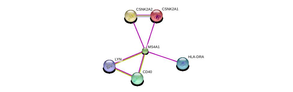 http://string-db.org/version_10/api/image/networkList?limit=0&targetmode=proteins&caller_identity=gene_cards&network_flavor=evidence&identifiers=9606.ENSP00000314620%0d%0a9606.ENSP00000378786%0d%0a9606.ENSP00000361359%0d%0a9606.ENSP00000428924%0d%0a9606.ENSP00000262506%0d%0a9606.ENSP00000217244%0d%0a
