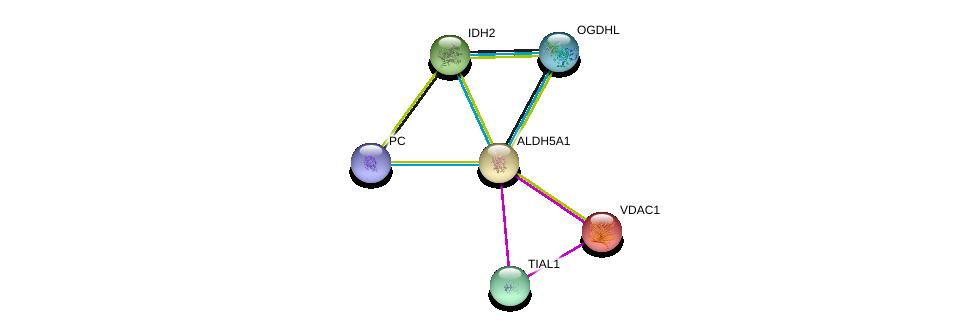 http://string-db.org/version_10/api/image/networkList?limit=0&targetmode=proteins&caller_identity=gene_cards&network_flavor=evidence&identifiers=9606.ENSP00000314649%0d%0a9606.ENSP00000358089%0d%0a9606.ENSP00000265333%0d%0a9606.ENSP00000331897%0d%0a9606.ENSP00000363216%0d%0a9606.ENSP00000377527%0d%0a