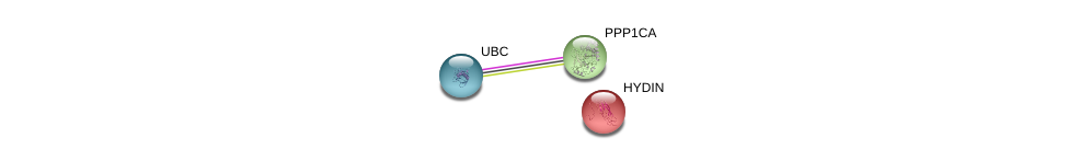 http://string-db.org/version_10/api/image/networkList?limit=0&targetmode=proteins&caller_identity=gene_cards&network_flavor=evidence&identifiers=9606.ENSP00000314736%0d%0a9606.ENSP00000326031%0d%0a9606.ENSP00000344818%0d%0a