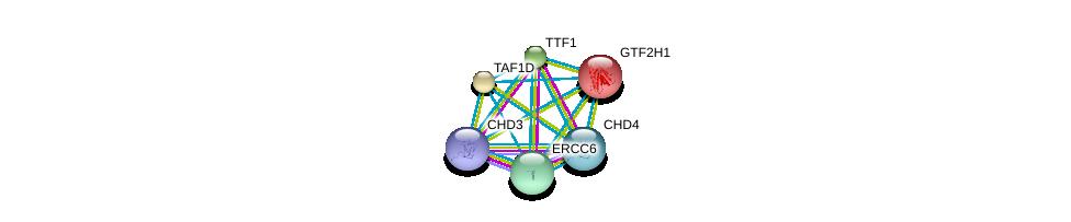 http://string-db.org/version_10/api/image/networkList?limit=0&targetmode=proteins&caller_identity=gene_cards&network_flavor=evidence&identifiers=9606.ENSP00000314971%0d%0a9606.ENSP00000369716%0d%0a9606.ENSP00000333920%0d%0a9606.ENSP00000265963%0d%0a9606.ENSP00000349508%0d%0a9606.ENSP00000348089%0d%0a