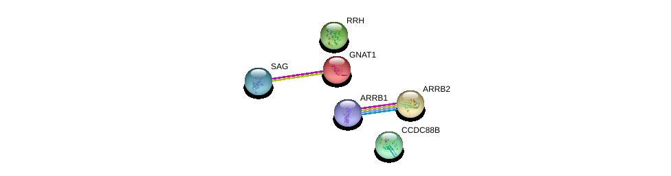 http://string-db.org/version_10/api/image/networkList?limit=0&targetmode=proteins&caller_identity=gene_cards&network_flavor=evidence&identifiers=9606.ENSP00000314992%0d%0a9606.ENSP00000349238%0d%0a9606.ENSP00000386444%0d%0a9606.ENSP00000409581%0d%0a9606.ENSP00000269260%0d%0a9606.ENSP00000232461%0d%0a