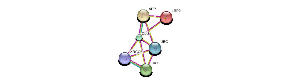 http://string-db.org/version_10/api/image/networkList?limit=0&targetmode=proteins&caller_identity=gene_cards&network_flavor=evidence&identifiers=9606.ENSP00000315130%0d%0a9606.ENSP00000293288%0d%0a9606.ENSP00000352257%0d%0a9606.ENSP00000263816%0d%0a9606.ENSP00000284981%0d%0a9606.ENSP00000344818%0d%0a
