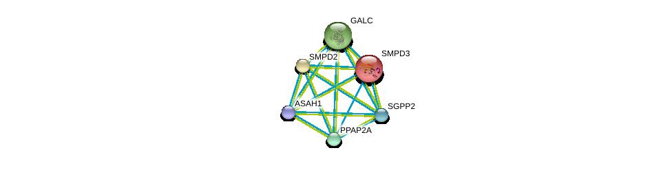 http://string-db.org/version_10/api/image/networkList?limit=0&targetmode=proteins&caller_identity=gene_cards&network_flavor=evidence&identifiers=9606.ENSP00000315137%0d%0a9606.ENSP00000371152%0d%0a9606.ENSP00000219334%0d%0a9606.ENSP00000258052%0d%0a9606.ENSP00000261304%0d%0a9606.ENSP00000264775%0d%0a