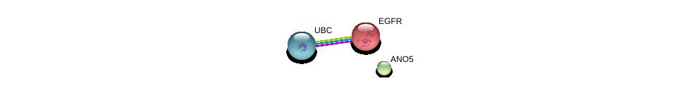 http://string-db.org/version_10/api/image/networkList?limit=0&targetmode=proteins&caller_identity=gene_cards&network_flavor=evidence&identifiers=9606.ENSP00000315371%0d%0a9606.ENSP00000275493%0d%0a9606.ENSP00000344818%0d%0a