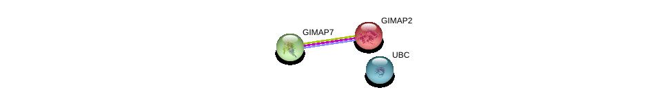 http://string-db.org/version_10/api/image/networkList?limit=0&targetmode=proteins&caller_identity=gene_cards&network_flavor=evidence&identifiers=9606.ENSP00000315474%0d%0a9606.ENSP00000223293%0d%0a9606.ENSP00000344818%0d%0a