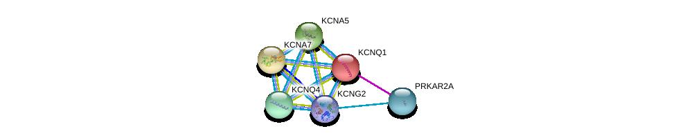 http://string-db.org/version_10/api/image/networkList?limit=0&targetmode=proteins&caller_identity=gene_cards&network_flavor=evidence&identifiers=9606.ENSP00000315654%0d%0a9606.ENSP00000155840%0d%0a9606.ENSP00000221444%0d%0a9606.ENSP00000252321%0d%0a9606.ENSP00000262916%0d%0a9606.ENSP00000265563%0d%0a