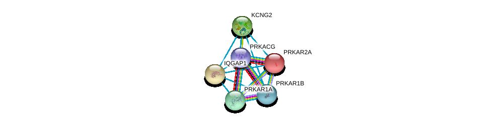 http://string-db.org/version_10/api/image/networkList?limit=0&targetmode=proteins&caller_identity=gene_cards&network_flavor=evidence&identifiers=9606.ENSP00000315654%0d%0a9606.ENSP00000353415%0d%0a9606.ENSP00000366488%0d%0a9606.ENSP00000265563%0d%0a9606.ENSP00000268182%0d%0a9606.ENSP00000351410%0d%0a