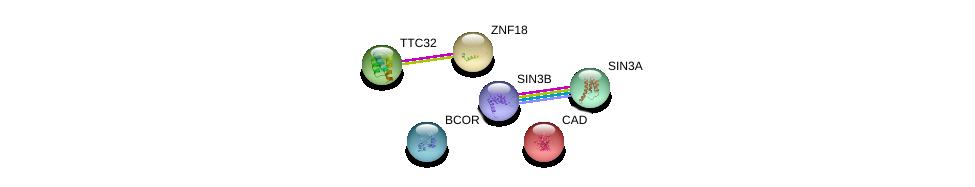 http://string-db.org/version_10/api/image/networkList?limit=0&targetmode=proteins&caller_identity=gene_cards&network_flavor=evidence&identifiers=9606.ENSP00000315664%0d%0a9606.ENSP00000333018%0d%0a9606.ENSP00000369131%0d%0a9606.ENSP00000353622%0d%0a9606.ENSP00000367705%0d%0a9606.ENSP00000264705%0d%0a