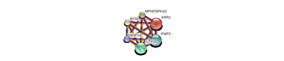 http://string-db.org/version_10/api/image/networkList?limit=0&targetmode=proteins&caller_identity=gene_cards&network_flavor=evidence&identifiers=9606.ENSP00000315674%0d%0a9606.ENSP00000229214%0d%0a9606.ENSP00000230340%0d%0a9606.ENSP00000244230%0d%0a9606.ENSP00000261637%0d%0a9606.ENSP00000291576%0d%0a