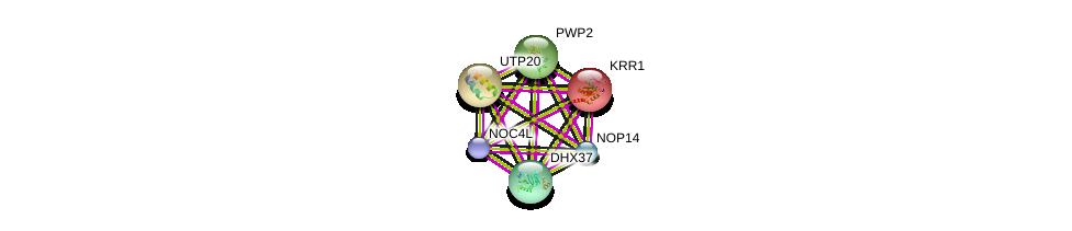 http://string-db.org/version_10/api/image/networkList?limit=0&targetmode=proteins&caller_identity=gene_cards&network_flavor=evidence&identifiers=9606.ENSP00000315674%0d%0a9606.ENSP00000311135%0d%0a9606.ENSP00000261637%0d%0a9606.ENSP00000328854%0d%0a9606.ENSP00000291576%0d%0a9606.ENSP00000229214%0d%0a