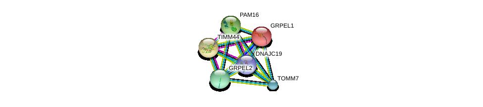 http://string-db.org/version_10/api/image/networkList?limit=0&targetmode=proteins&caller_identity=gene_cards&network_flavor=evidence&identifiers=9606.ENSP00000315693%0d%0a9606.ENSP00000372005%0d%0a9606.ENSP00000270538%0d%0a9606.ENSP00000264954%0d%0a9606.ENSP00000351214%0d%0a9606.ENSP00000329558%0d%0a