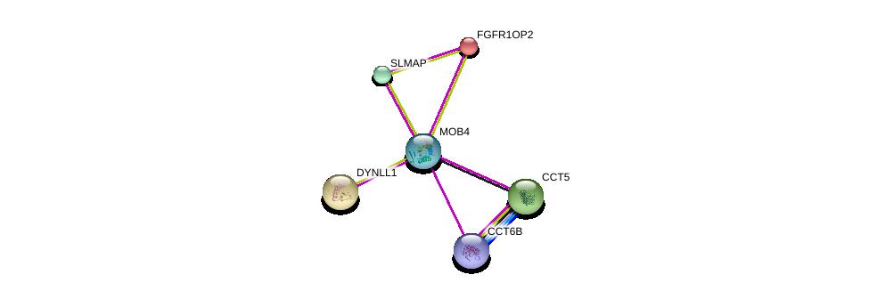 http://string-db.org/version_10/api/image/networkList?limit=0&targetmode=proteins&caller_identity=gene_cards&network_flavor=evidence&identifiers=9606.ENSP00000315702%0d%0a9606.ENSP00000229395%0d%0a9606.ENSP00000295951%0d%0a9606.ENSP00000242577%0d%0a9606.ENSP00000327191%0d%0a9606.ENSP00000280326%0d%0a
