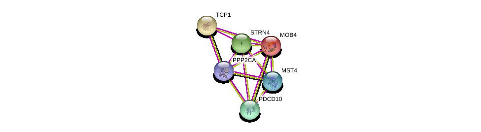 http://string-db.org/version_10/api/image/networkList?limit=0&targetmode=proteins&caller_identity=gene_cards&network_flavor=evidence&identifiers=9606.ENSP00000315702%0d%0a9606.ENSP00000317334%0d%0a9606.ENSP00000375777%0d%0a9606.ENSP00000376506%0d%0a9606.ENSP00000377867%0d%0a9606.ENSP00000418447%0d%0a