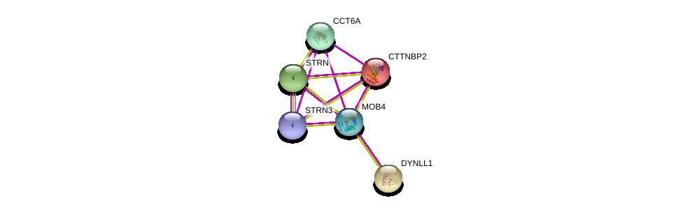 http://string-db.org/version_10/api/image/networkList?limit=0&targetmode=proteins&caller_identity=gene_cards&network_flavor=evidence&identifiers=9606.ENSP00000315702%0d%0a9606.ENSP00000350071%0d%0a9606.ENSP00000160373%0d%0a9606.ENSP00000275603%0d%0a9606.ENSP00000263918%0d%0a9606.ENSP00000242577%0d%0a