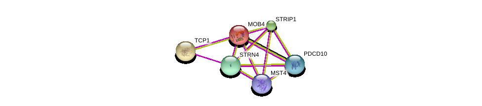 http://string-db.org/version_10/api/image/networkList?limit=0&targetmode=proteins&caller_identity=gene_cards&network_flavor=evidence&identifiers=9606.ENSP00000315702%0d%0a9606.ENSP00000375777%0d%0a9606.ENSP00000377867%0d%0a9606.ENSP00000376506%0d%0a9606.ENSP00000317334%0d%0a9606.ENSP00000358810%0d%0a