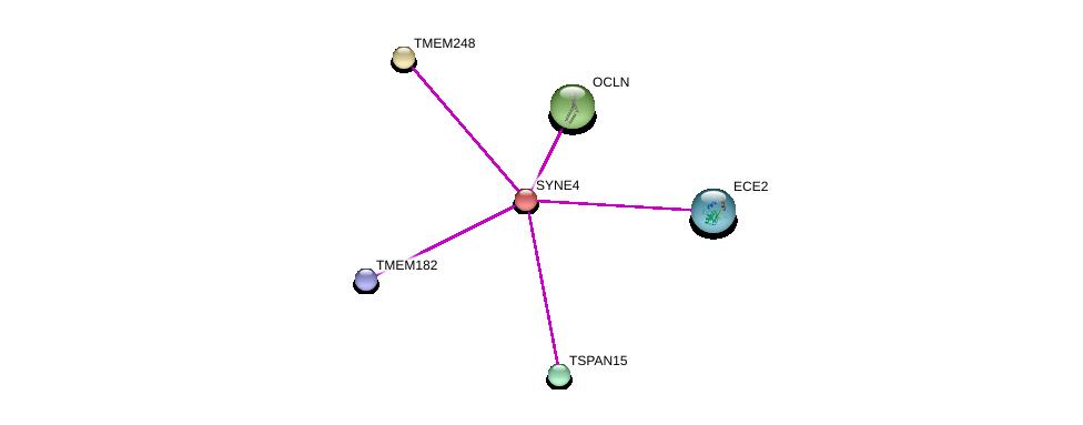 http://string-db.org/version_10/api/image/networkList?limit=0&targetmode=proteins&caller_identity=gene_cards&network_flavor=evidence&identifiers=9606.ENSP00000316130%0d%0a9606.ENSP00000347379%0d%0a9606.ENSP00000384223%0d%0a9606.ENSP00000340668%0d%0a9606.ENSP00000394178%0d%0a9606.ENSP00000362387%0d%0a