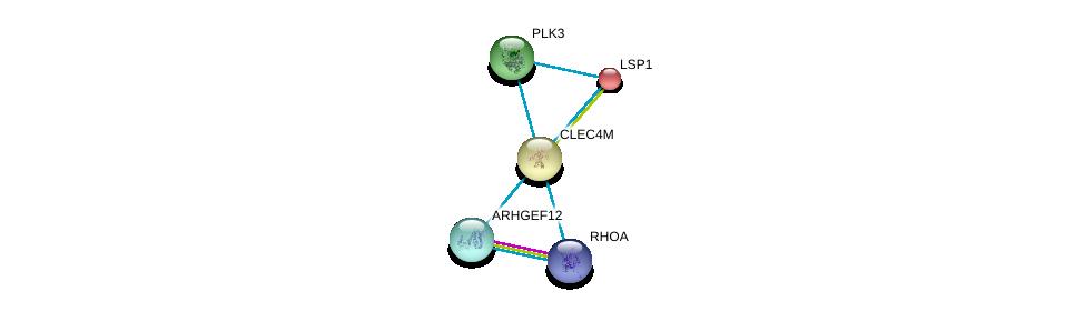 http://string-db.org/version_10/api/image/networkList?limit=0&targetmode=proteins&caller_identity=gene_cards&network_flavor=evidence&identifiers=9606.ENSP00000316228%0d%0a9606.ENSP00000308383%0d%0a9606.ENSP00000308383%0d%0a9606.ENSP00000400175%0d%0a9606.ENSP00000361275%0d%0a9606.ENSP00000380942%0d%0a