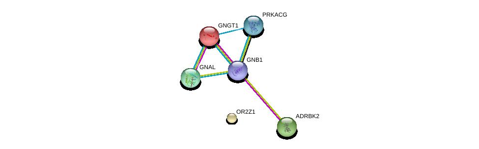 http://string-db.org/version_10/api/image/networkList?limit=0&targetmode=proteins&caller_identity=gene_cards&network_flavor=evidence&identifiers=9606.ENSP00000316284%0d%0a9606.ENSP00000248572%0d%0a9606.ENSP00000367869%0d%0a9606.ENSP00000334051%0d%0a9606.ENSP00000366488%0d%0a9606.ENSP00000317578%0d%0a