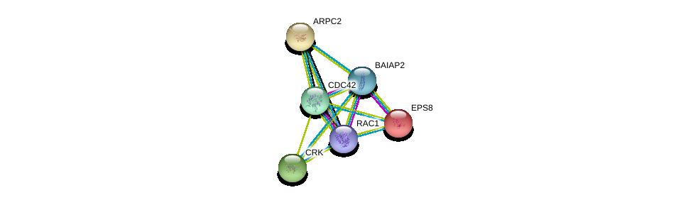 http://string-db.org/version_10/api/image/networkList?limit=0&targetmode=proteins&caller_identity=gene_cards&network_flavor=evidence&identifiers=9606.ENSP00000316338%0d%0a9606.ENSP00000314458%0d%0a9606.ENSP00000348461%0d%0a9606.ENSP00000281172%0d%0a9606.ENSP00000295685%0d%0a9606.ENSP00000300574%0d%0a