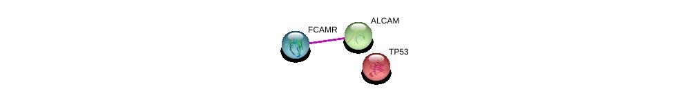 http://string-db.org/version_10/api/image/networkList?limit=0&targetmode=proteins&caller_identity=gene_cards&network_flavor=evidence&identifiers=9606.ENSP00000316491%0d%0a9606.ENSP00000305988%0d%0a9606.ENSP00000269305%0d%0a