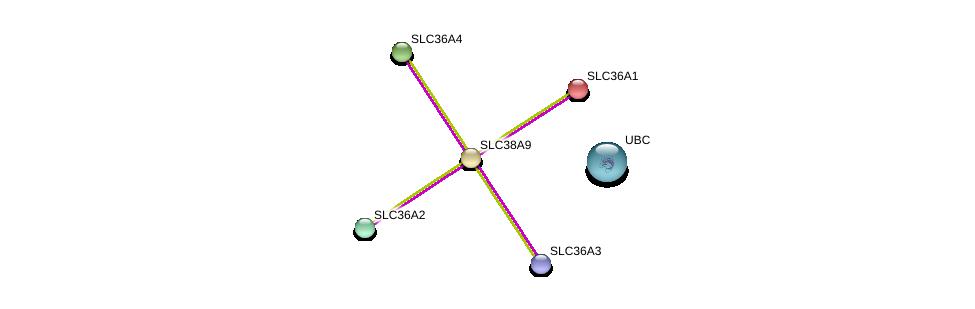 http://string-db.org/version_10/api/image/networkList?limit=0&targetmode=proteins&caller_identity=gene_cards&network_flavor=evidence&identifiers=9606.ENSP00000316596%0d%0a9606.ENSP00000344818%0d%0a9606.ENSP00000334223%0d%0a9606.ENSP00000317382%0d%0a9606.ENSP00000243389%0d%0a9606.ENSP00000366942%0d%0a