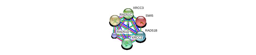 http://string-db.org/version_10/api/image/networkList?limit=0&targetmode=proteins&caller_identity=gene_cards&network_flavor=evidence&identifiers=9606.ENSP00000316609%0d%0a9606.ENSP00000336701%0d%0a9606.ENSP00000343392%0d%0a9606.ENSP00000352271%0d%0a9606.ENSP00000419471%0d%0a9606.ENSP00000466399%0d%0a