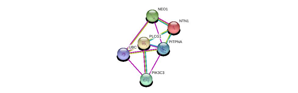 http://string-db.org/version_10/api/image/networkList?limit=0&targetmode=proteins&caller_identity=gene_cards&network_flavor=evidence&identifiers=9606.ENSP00000316809%0d%0a9606.ENSP00000173229%0d%0a9606.ENSP00000344818%0d%0a9606.ENSP00000244007%0d%0a9606.ENSP00000261908%0d%0a9606.ENSP00000262039%0d%0a
