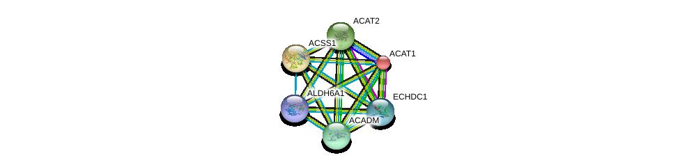 http://string-db.org/version_10/api/image/networkList?limit=0&targetmode=proteins&caller_identity=gene_cards&network_flavor=evidence&identifiers=9606.ENSP00000316924%0d%0a9606.ENSP00000265838%0d%0a9606.ENSP00000450436%0d%0a9606.ENSP00000409612%0d%0a9606.ENSP00000356015%0d%0a9606.ENSP00000436585%0d%0a
