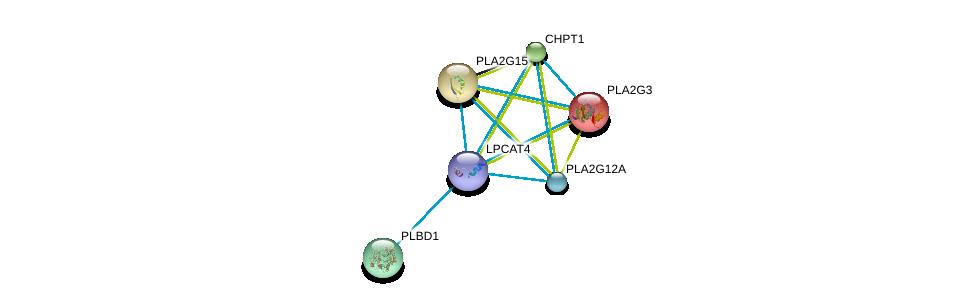http://string-db.org/version_10/api/image/networkList?limit=0&targetmode=proteins&caller_identity=gene_cards&network_flavor=evidence&identifiers=9606.ENSP00000317300%0d%0a9606.ENSP00000215885%0d%0a9606.ENSP00000219345%0d%0a9606.ENSP00000229266%0d%0a9606.ENSP00000240617%0d%0a9606.ENSP00000243501%0d%0a