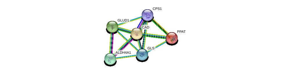 http://string-db.org/version_10/api/image/networkList?limit=0&targetmode=proteins&caller_identity=gene_cards&network_flavor=evidence&identifiers=9606.ENSP00000317379%0d%0a9606.ENSP00000402608%0d%0a9606.ENSP00000290597%0d%0a9606.ENSP00000277865%0d%0a9606.ENSP00000264220%0d%0a9606.ENSP00000264705%0d%0a