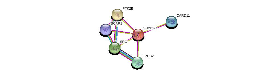 http://string-db.org/version_10/api/image/networkList?limit=0&targetmode=proteins&caller_identity=gene_cards&network_flavor=evidence&identifiers=9606.ENSP00000317817%0d%0a9606.ENSP00000391669%0d%0a9606.ENSP00000380150%0d%0a9606.ENSP00000332816%0d%0a9606.ENSP00000350941%0d%0a9606.ENSP00000363763%0d%0a