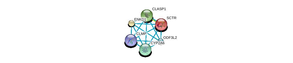 http://string-db.org/version_10/api/image/networkList?limit=0&targetmode=proteins&caller_identity=gene_cards&network_flavor=evidence&identifiers=9606.ENSP00000318029%0d%0a9606.ENSP00000301141%0d%0a9606.ENSP00000019103%0d%0a9606.ENSP00000405577%0d%0a9606.ENSP00000243878%0d%0a9606.ENSP00000263710%0d%0a
