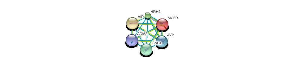 http://string-db.org/version_10/api/image/networkList?limit=0&targetmode=proteins&caller_identity=gene_cards&network_flavor=evidence&identifiers=9606.ENSP00000318077%0d%0a9606.ENSP00000356213%0d%0a9606.ENSP00000366506%0d%0a9606.ENSP00000367869%0d%0a9606.ENSP00000369647%0d%0a9606.ENSP00000379086%0d%0a
