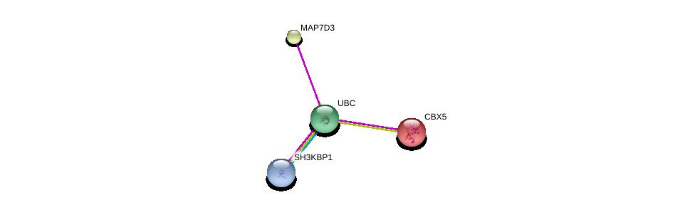 http://string-db.org/version_10/api/image/networkList?limit=0&targetmode=proteins&caller_identity=gene_cards&network_flavor=evidence&identifiers=9606.ENSP00000318086%0d%0a9606.ENSP00000344818%0d%0a9606.ENSP00000380921%0d%0a9606.ENSP00000209875%0d%0a9606.ENSP00000209875%0d%0a